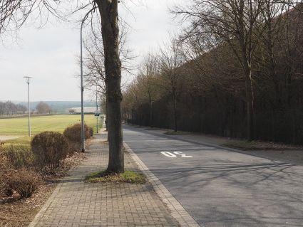 störende Bäume im Gehweg